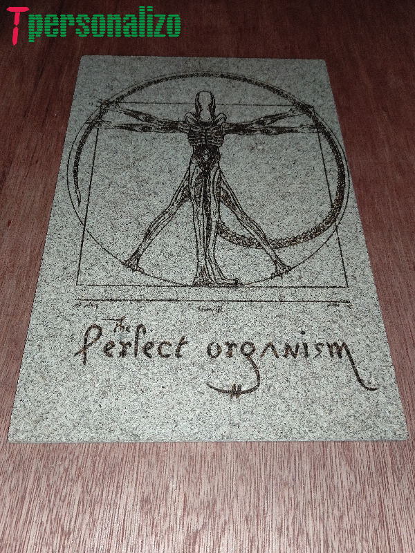 The perfect organism